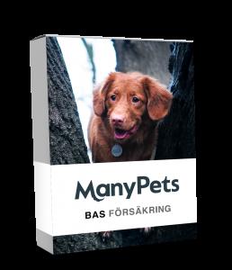 Many Pets Bas försäkring